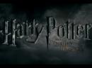 Kino: Harry Potter a Relikvie smrti 2 - ukončení jedné dlouhé ságy